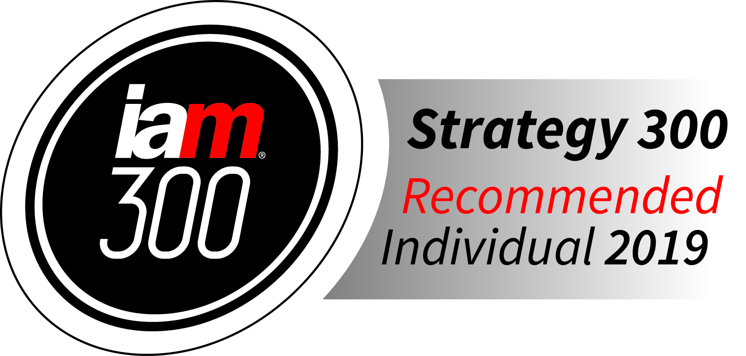 IAM Strategy 300 recommended individual 2019